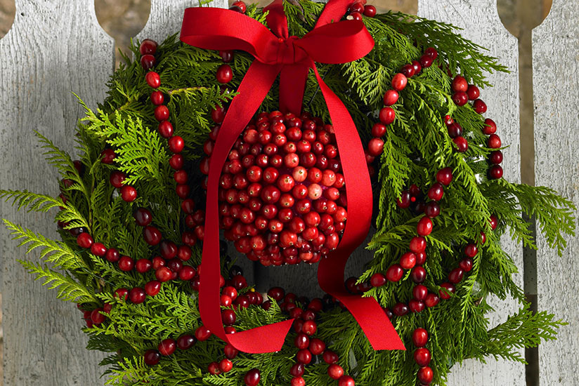 Cranberry Holiday Wreath