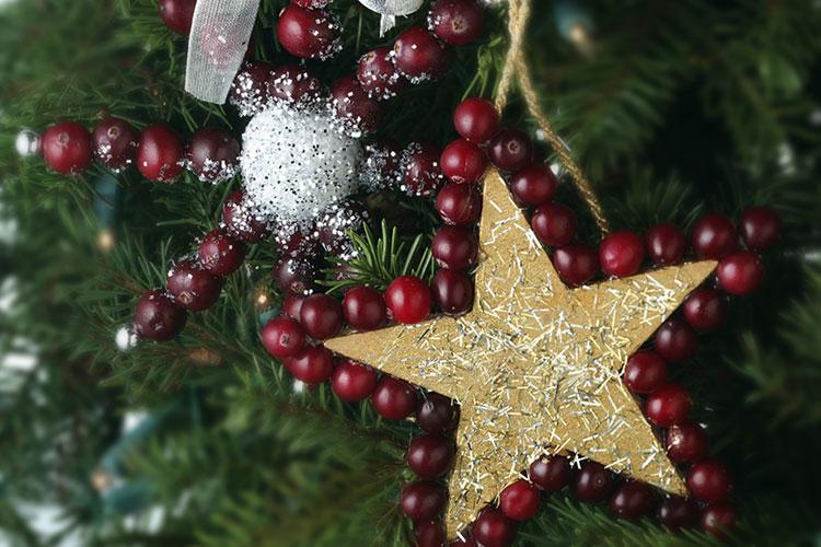 Cranberry Snowflake Ornament