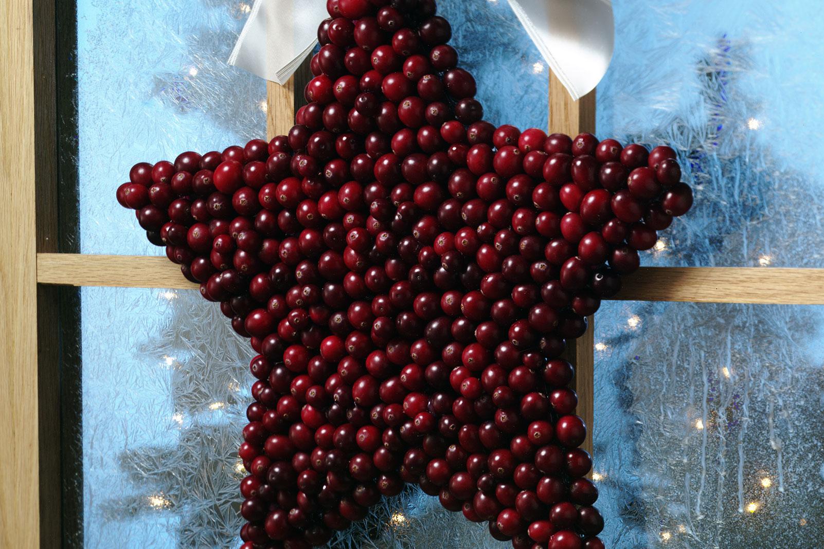 Festive Cranberry Star
