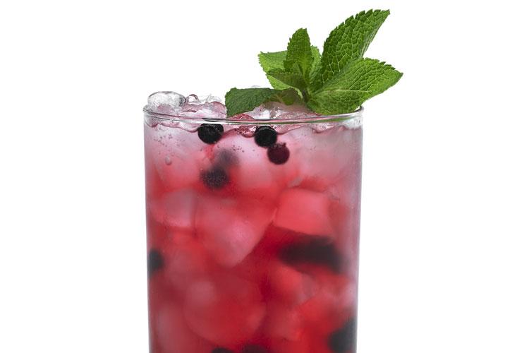 Cranberry Blackberry Sour
