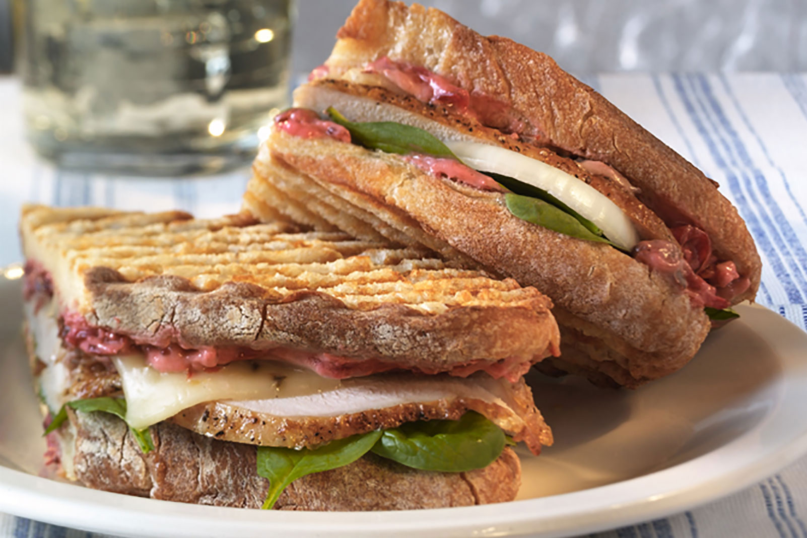 Turkey and Cranberry Panini