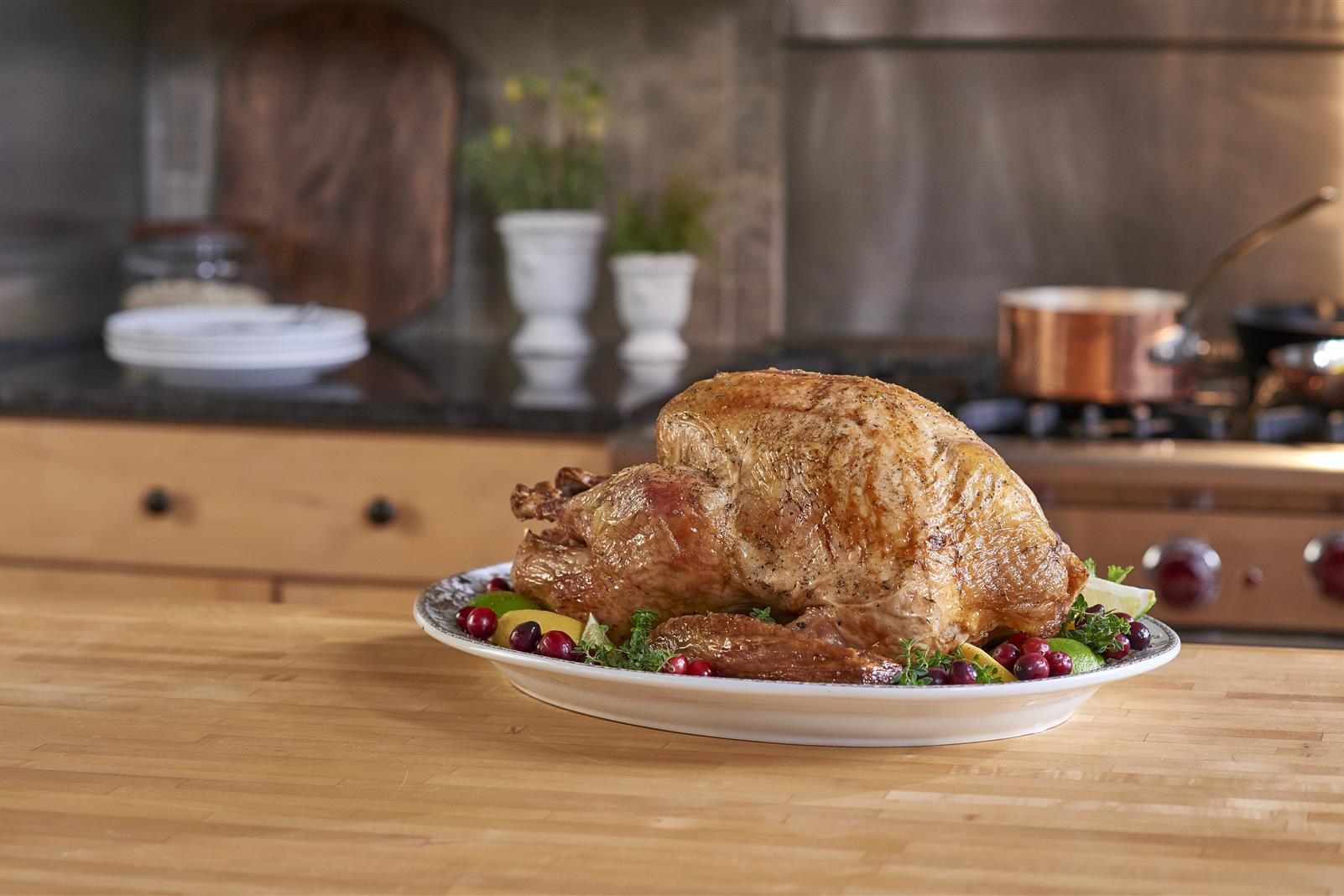 White Cranberry Brined Turkey